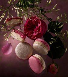 pierre-herme-macaron-les-jardins